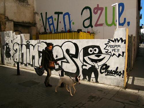 Dog walker. VLC. SP. NR20