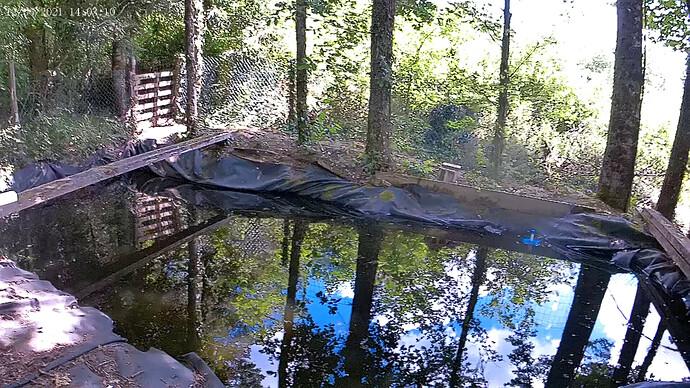 vlcsnap-2021-06-14-23h37m17s674 - Swimming pond