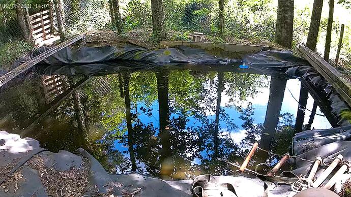 vlcsnap-2021-06-14-23h31m17s998 - Swimming pond